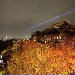 京都今日头条